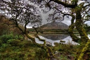 ireland_connemara_lake